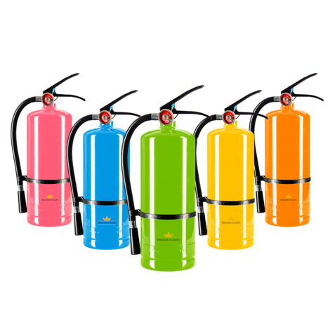 Paint powder extinguisher